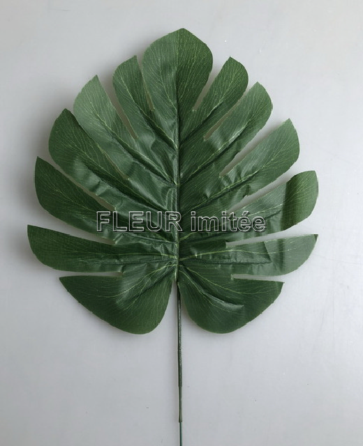 List monstera 36cm 12/144
