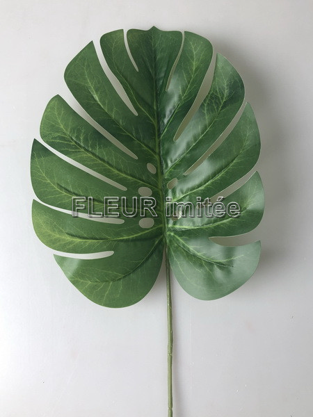 List monstera 61cm LATEX  12/216