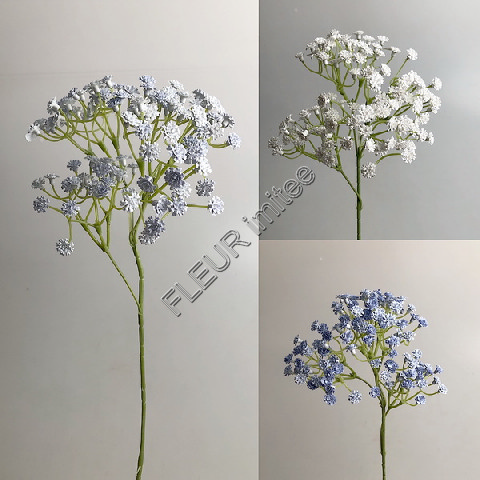 Gypsophila latex 60cm BLUE 72/720